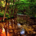 Gentle Stream by Pixabay