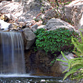 Gentle Waterfall by Amy Fose
