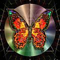 Geometron Fyr Lepidoptera by Iowan Stone-Flowers