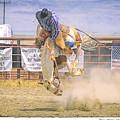 George Barton Mcdermitt Nevada 2008 by Mary Williams Hyde