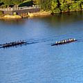 Georgetown Crew On The Potomac? by Cora Wandel