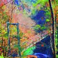 Georgia Gorge by Nancy Faircloth