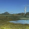 Geothermal Power Station Iceland  by Elizabetha Fox