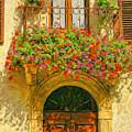 Gerani Coloriti by Dominic Piperata