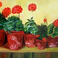 Geraniums In A Row-- Sold by Susan Dehlinger