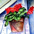 Geraniums by Sandy Ryan