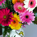 Gerbera Daisy Bouquet by Marilyn Hunt