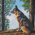 German Shepherd Lookout by Lee Ann Shepard