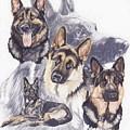 German Shepherd W/ghost by Barbara Keith