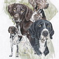 German Shorted-haired Pointer Revamp by Barbara Keith