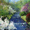 Germany Baden-baden Spring by Yuriy  Shevchuk