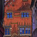 Germany Ulm by Yuriy Shevchuk
