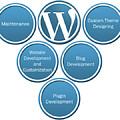 Get Result Oriented Word Press Development Services by Wordpress development servcies