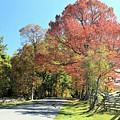 Gettysburg  In The  Fall by M C Hood