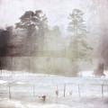 Ghost And Shadows II - Farm, Sea, And Sun by Melissa D Johnston