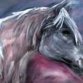 Spirit Horse by Katt Yanda