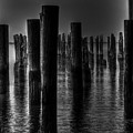 Ghost Pilings by E R Smith