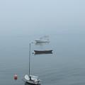 Ghost Ships by Kelly Mezzapelle