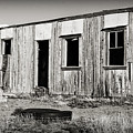 Ghost Town Relic In Cuervo by Patricia Montgomery