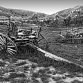 Ghost Wagons Of Bannack Montana by Daniel Hagerman