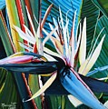 Giant Bird Of Paradise by Marionette Taboniar