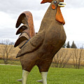Giant Rooster by Thomas Firak