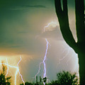 Giant Saguaro Cactus Lightning Storm by James BO  Insogna