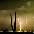 Giant Saguaro Southwest Lightning  Peace Out  by James BO  Insogna