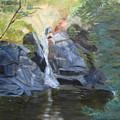 Gibbs Falls by Linda Feinberg
