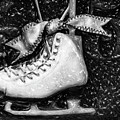 Gift Of Ice Skating by David Millenheft