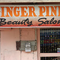 Ginger Pink by Jez C Self