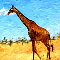 Giraffe by David Lane