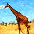 Giraffe by David Lane
