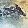 Giraffe Poly by Francisco Carlos