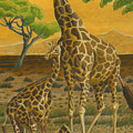 Giraffes At Sunset by Dominic White