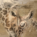 Giraffes, Big And Small by Maria Astedt