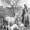 Girl Tending Sheep by Granger