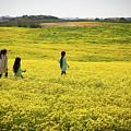 Girls Walking In The Field by Gal Shoval mashiach