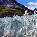 Glacier Bay by James Black