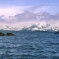 Glacier Bay Landscape Alaska by NaturesPix
