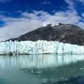Glacier Bay by Sean Griffin