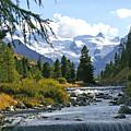 Glacier Stream by Tom Reynen
