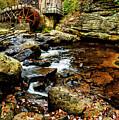 Glade Creek Grist Mill Fall  by Thomas R Fletcher