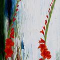 Gladiolus  by Ivan Rijhoff