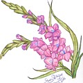 Gladiolus Pink by Sara Alhajeri