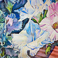 Glads On The Deck by June Conte  Pryor