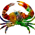 Glass Crab by Michael Colgate