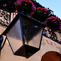Glass Light Housing With Red Flower Architecture In Saint August by John McLenaghan