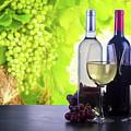 Enjoying Wine by Anastasy Yarmolovich