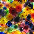 Glass Splendor by Tom Tripp
